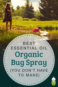 best-effective-organic-bug-spray